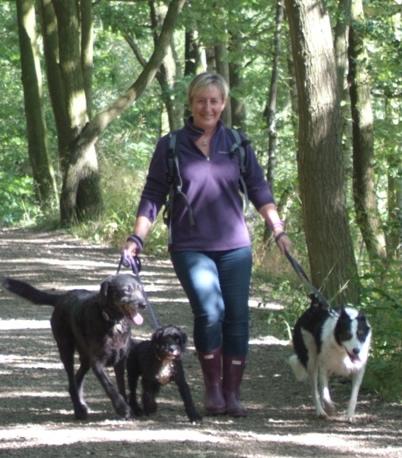 Dog Walking Prices Sheffield
